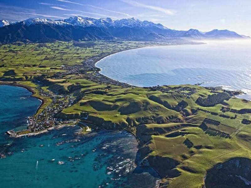 Christchurch Day Tours Kaikoura Dolphin Watching